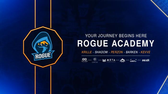 Rogue представили команду академии